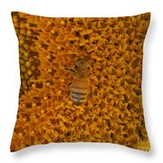 Honey Bee On Sunflower Throw Pillow
