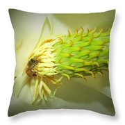 Honey Bees And Magnolia Three Throw Pillow