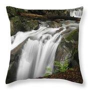 Honey Hollow Falls Throw Pillow