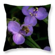 Honey Hunter Throw Pillow