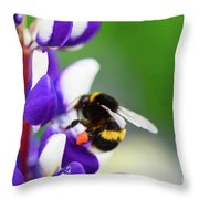 Honey Nut Lupin Throw Pillow