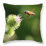 Honeybee Flying To Thistle  Throw Pillow