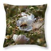 Honeybee Gathering From A White Flower Throw Pillow