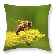 Honeybee Harvesting Pollen From Flowers Throw Pillow