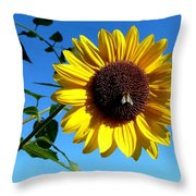 Honeybee On A Sunflower Throw Pillow