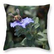 Honeybee On Blue Daze Throw Pillow