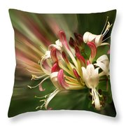 Honeysuckle Breeze Throw Pillow