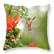 Honeysuckle Hummer Throw Pillow
