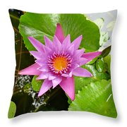 Honolulu Water Lily Throw Pillow