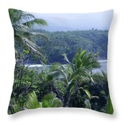 Honomaele Near Mokulehua At Hale O Piilani Heiau Hana Maui Hawaii Throw Pillow