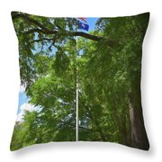Honor On The University Of South Carolina Campus Throw Pillow