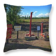 Honor System Throw Pillow