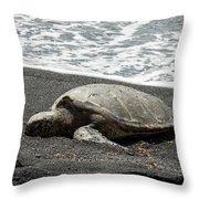 Honu Sleeping On The Shoreline At Punalu'u Throw Pillow