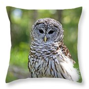 Hoo Are You Throw Pillow