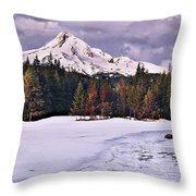 Hood On Ice Throw Pillow