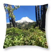 Hood View Throw Pillow
