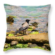 Hooded Crow Throw Pillow