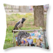 Hooded Crow With Garbage Throw Pillow