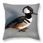 Hooded Merganser Duck Drake Throw Pillow