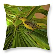 Hooded Oriole H01 Throw Pillow