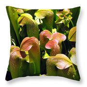 Hoodies Throw Pillow
