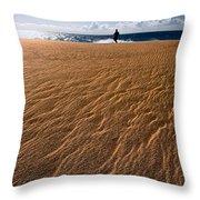 Ho'okahi - A Stroll Along A Beach Throw Pillow