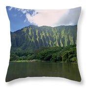 Hoolanluhia Botanical Garden Throw Pillow