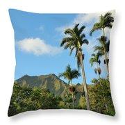 Ho'omaluhia Botanical Garden Throw Pillow