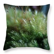 Hoomalumalu Kuhiwa Throw Pillow