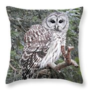 Hooooooo Throw Pillow