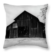 Hoops At The Barn Throw Pillow