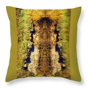Hooter Throw Pillow
