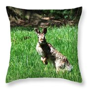 Hop Throw Pillow