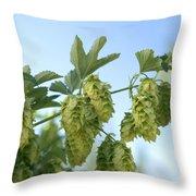 Hop Cones Throw Pillow