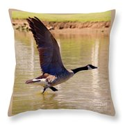 Hop Skip Fly Throw Pillow