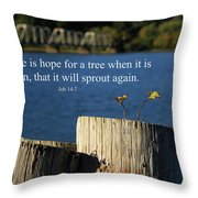 Hope For A Tree Throw Pillow by James Eddy