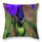 Hope Is The Soul Of The Dreamer Throw Pillow