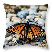 Hope Of The Monarch Butterfly Throw Pillow