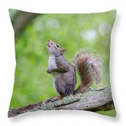 Hopes And Wishes Throw Pillow