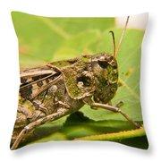 Hopper Face To Face Throw Pillow