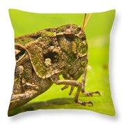 Hopper Facial Throw Pillow