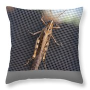Hopper Throw Pillow