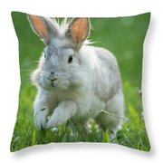 Hopping Rabbit Throw Pillow