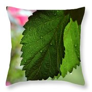 Hops Leaves Throw Pillow