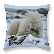 Hor D'oeuvres Throw Pillow