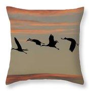 Horicon Marsh Cranes #2 Throw Pillow by Paul Schultz