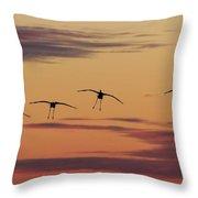 Horicon Marsh Cranes #4 Throw Pillow by Paul Schultz