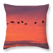 Horicon Marsh Geese Throw Pillow by Paul Schultz