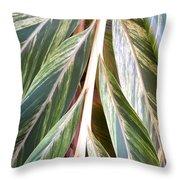 Horizon Of Palm Throw Pillow