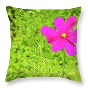 Pink Cosmos II Throw Pillow